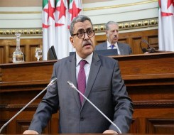 العرب اليوم - المعارضة البرلمانية الجزائرية تنتقد العودة إلى «البوتفليقية»