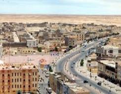 العرب اليوم - قوارض ضخمة تغزو شوارع بوينس آيرس وتتسبب في حوادث مرورية