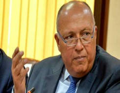 العرب اليوم - وزير الخارجية المصري يبحث مع المبعوث الأميركي مستجدات قضية سد النهضة