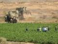العرب اليوم - مزارعون فلسطينيون يتظاهرون في غزة لرفع قيود إسرائيل عن تصدير منتجاتهم