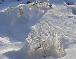العرب اليوم - إكتشاف جزيرة في أقصى شمال العالم في غرينلاند