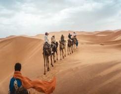 العرب اليوم - منطقة الجوف السعودية يُعتقد أنها أقدم موقع لنحت الحيوانات في العالم