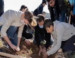 العرب اليوم - ممثلو 12 دولة عربية وإفريقية يزرعون الأشجار المثمرة في الغردقة وسفاجا لمواجهة مخاطر المناخ
