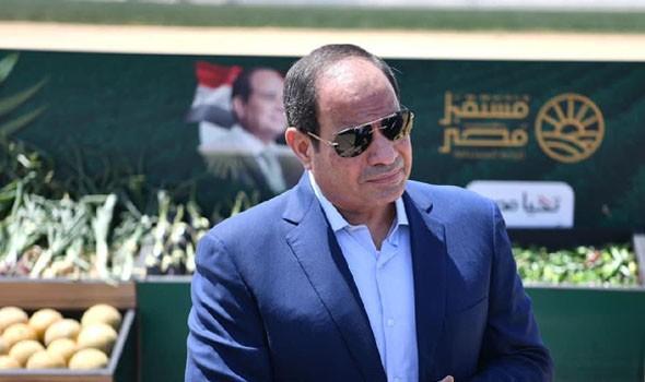 العرب اليوم - الرئيس المصري السيسي وأمير قطر اتفقا على أهمية العمل على استئناف التعاون