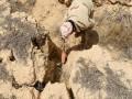 """العرب اليوم - مصادر إعلام تؤكد أن الأمن العراقي يقتل 3 من عناصر """"داعش"""" في كركوك"""