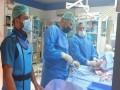 العرب اليوم - أستاذ كلى مصري يكشف عن تجربة زراعة كلية خنزير لإنسان