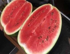 العرب اليوم - فوائد البطيخ لتحسين البشرة والعناية بها وأفضل خلطاته