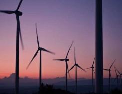 العرب اليوم - الإمارات تبدأ تشغيل الوحدة الثانية من محطة براكة للطاقة النووية