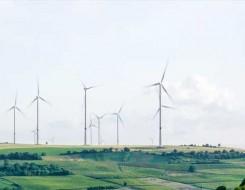 العرب اليوم - تفاصيل توضح أبحاث علمية حول مستقبل طاقة الرياح في السعودية