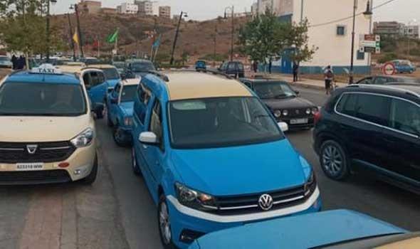 راعيات للمواشي يثرن الرأي العام في مصر