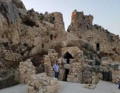 """العرب اليوم - دراسة توثق """"موقع الجِمال الأثري"""" عمره 8 آلاف عام في السعودية"""