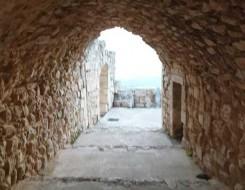 العرب اليوم - إقبال تاريخي لسياح أجانب على عاصمة السومريين جنوبي العراق.