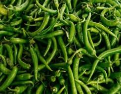 العرب اليوم - فوائد ذهبية لتناول الفلفل الأخضر