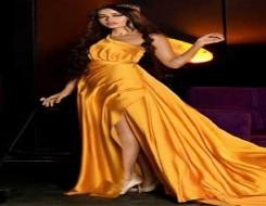 العرب اليوم - رحمة رياض تتألق بملابس السهرات الملونة