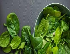 العرب اليوم - أطعمة تزيد من هرمون التستوستيرون وتعزز صحة البروستاتا
